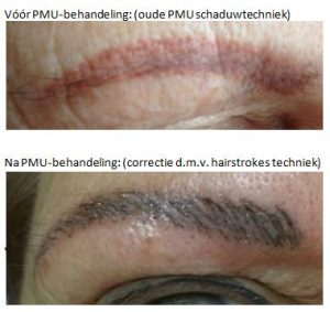 Permanente make-up hairstrokes